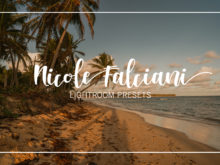 NICOLE FALCIANI LIGHTROOM PRESETS