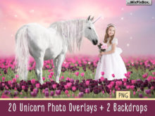 Unicorn PNG Overlays Pack + Backdrops