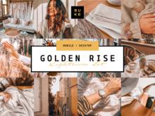 4 Golden Lightroom Presets Bundle
