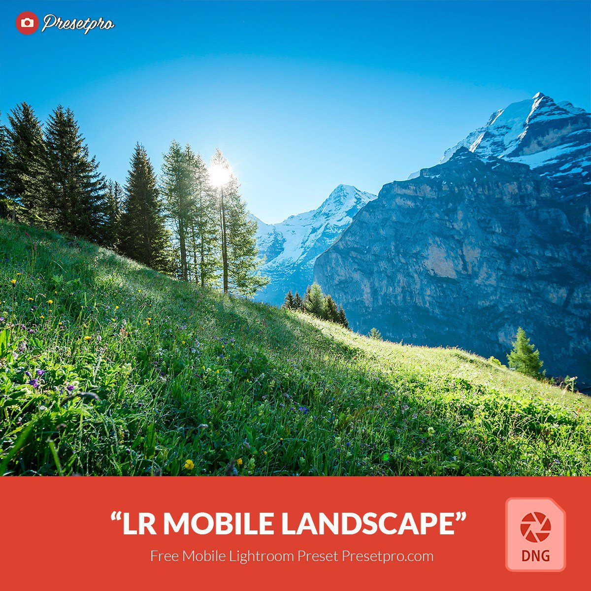 Presets para Lightroom Mobile paisaje  gratis dng