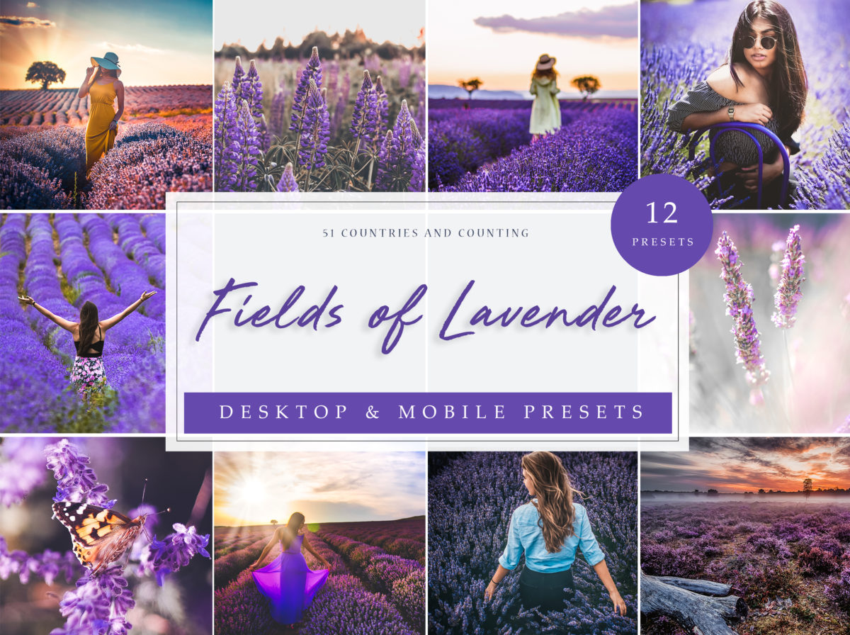 Fields of Lavender Travel Lightroom Presets