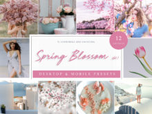 Spring Blossom Lifestyle & Travel Lightroom Presets