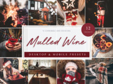 Fall and Winter Lightroom Presets Mulled Wine Theme