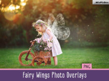 Fairy Wings Photo Overlays