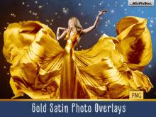 Gold Satin Photo Overlays