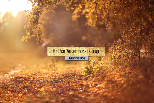 Golden Autumn Backdrop Template