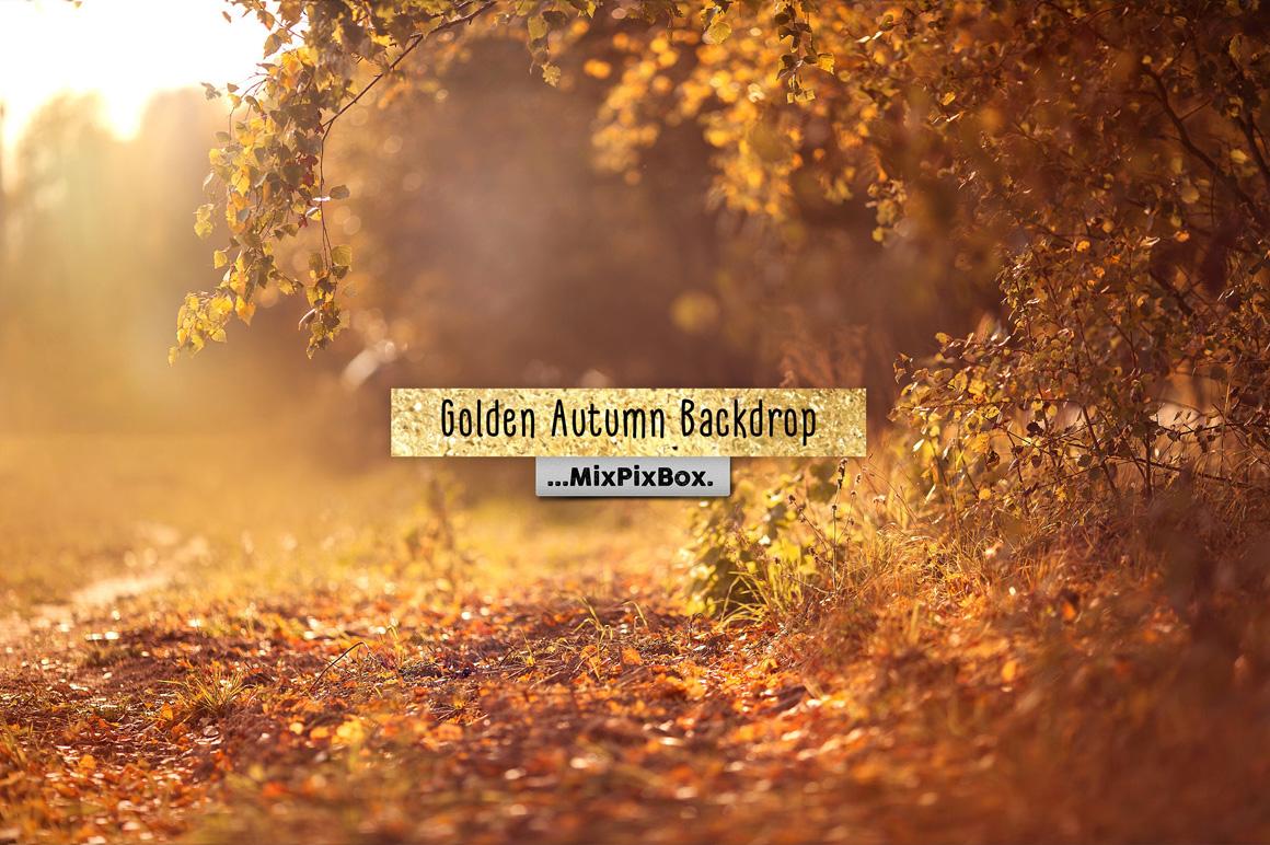 Golden Autumn Backdrop Template