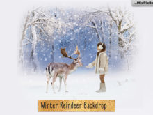 Winter Reindeer Backdrop + Scenery