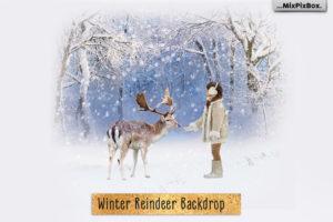 Winter Reindeer Backdrop + Scenery