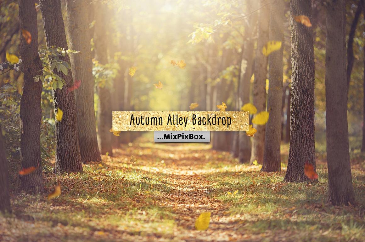 Autumn Alley Backdrop