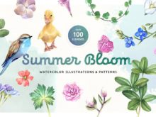 Summer Bloom Watercolor Elements Set