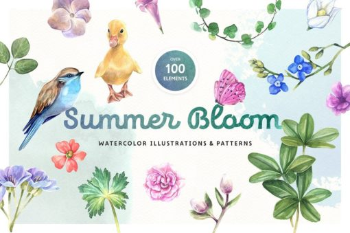 Summer Bloom Watercolor Elements Set
