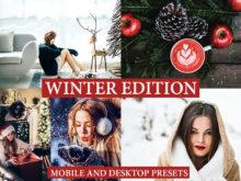 9 WINTER EDITION Lightroom Presets: Christmas Theme