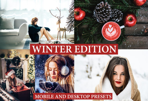 9 WINTER EDITION Lightroom Presets: Christmas Theme