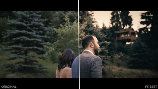 Wedding Color Premiere Pro Presets