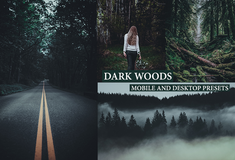 DARK WOODS Desktop + Mobile Lightroom Presets