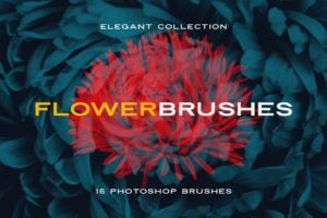 Elegant Flower Brushes for Photoshop