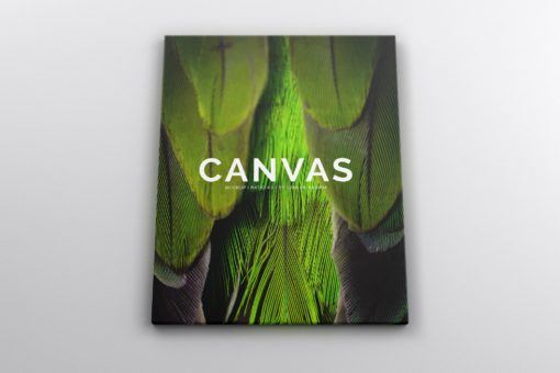 Portrait Canvas Ratio 4x5 Mockup 01