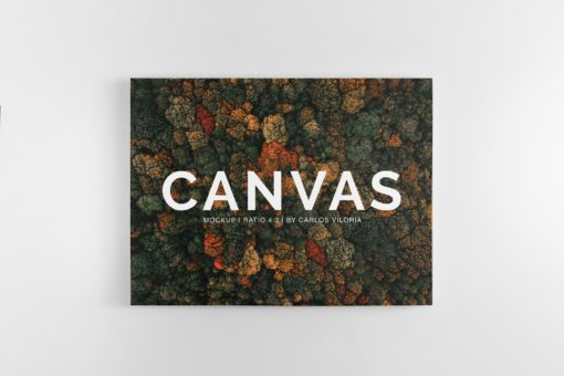 Landscape Canvas Ratio 4x3 Mockup 03
