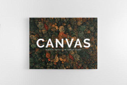 Landscape Canvas Ratio 4x3 Mockup 03