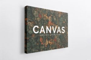 Landscape Canvas Ratio 4x3 Mockup 04