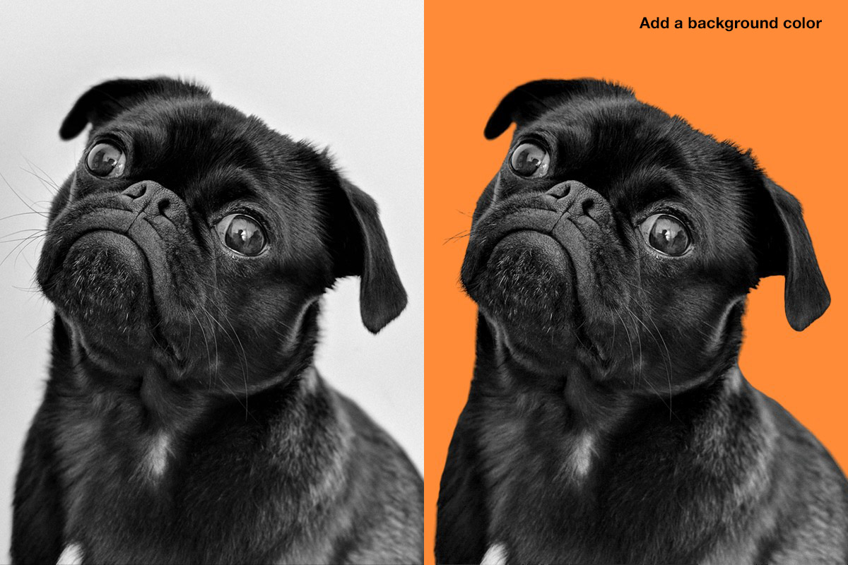 trace add color background editing tool