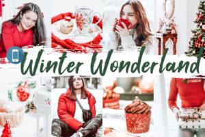 10 Winter Wonderland Mobile Lightroom Presets