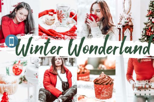 10 Winter Wonderland Mobile Lightroom Presets