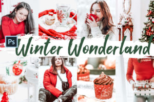 10 Winter Wonderland Photoshop Actions and LUTs
