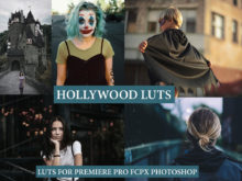 HOLLYWOOD LUTS for Premiere Pro, FCPX, Photoshop