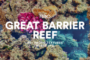 The Great Barrier Reef Photo Textures Bundle