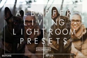 ALEXPFFR Living 2020 Preset Pack