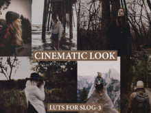 CINEMATIC LOOK LUTs for Videos and Photos on SLOG3