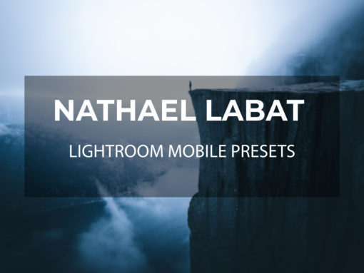 Nathael Labat Lightroom Mobile Presets