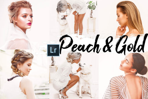 9x Peach & Gold Desktop Lightroom Presets