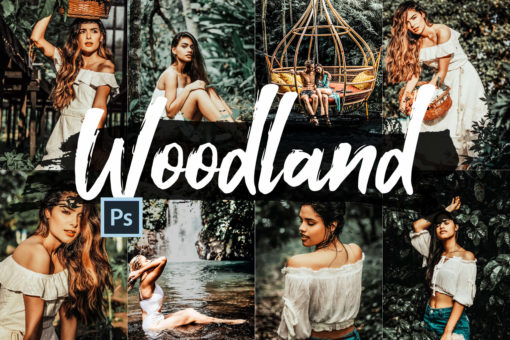 5x Woodland Photoshop Actions and LUTs Pack