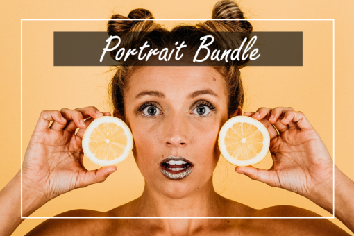 MyBeautifulPresets Portrait Bundle (Desktop + Mobile)