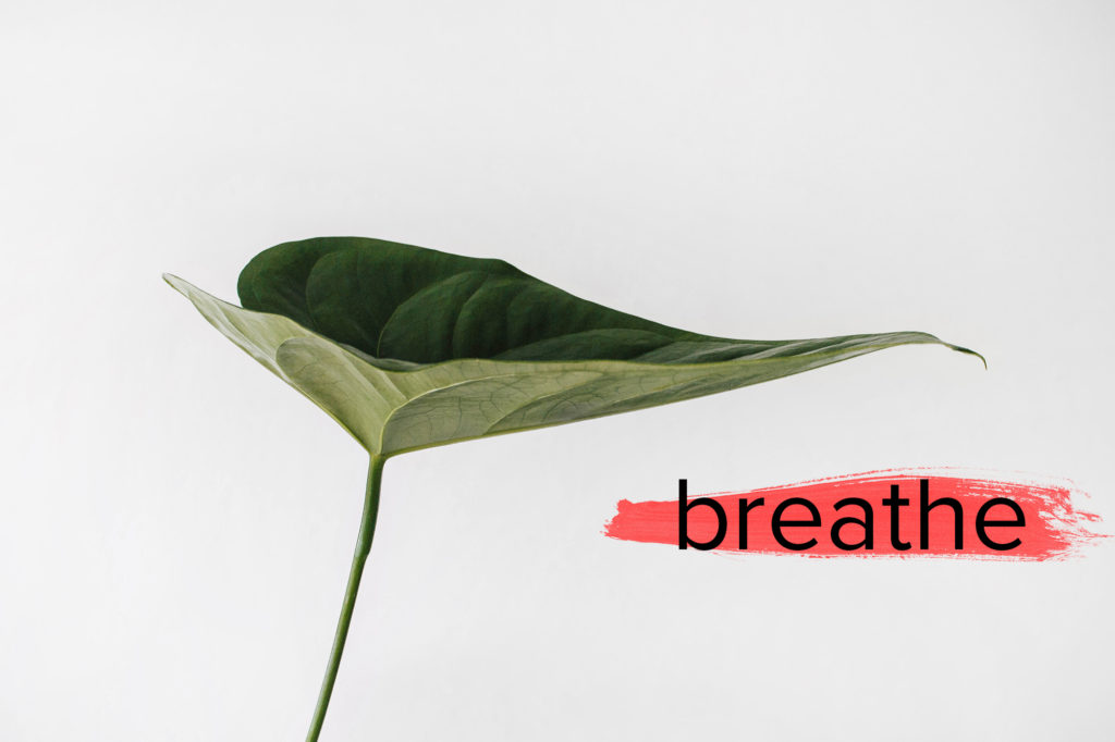 Breathe - Matt's Brush Overlay Pack - Matt Moloney - FilterGrade