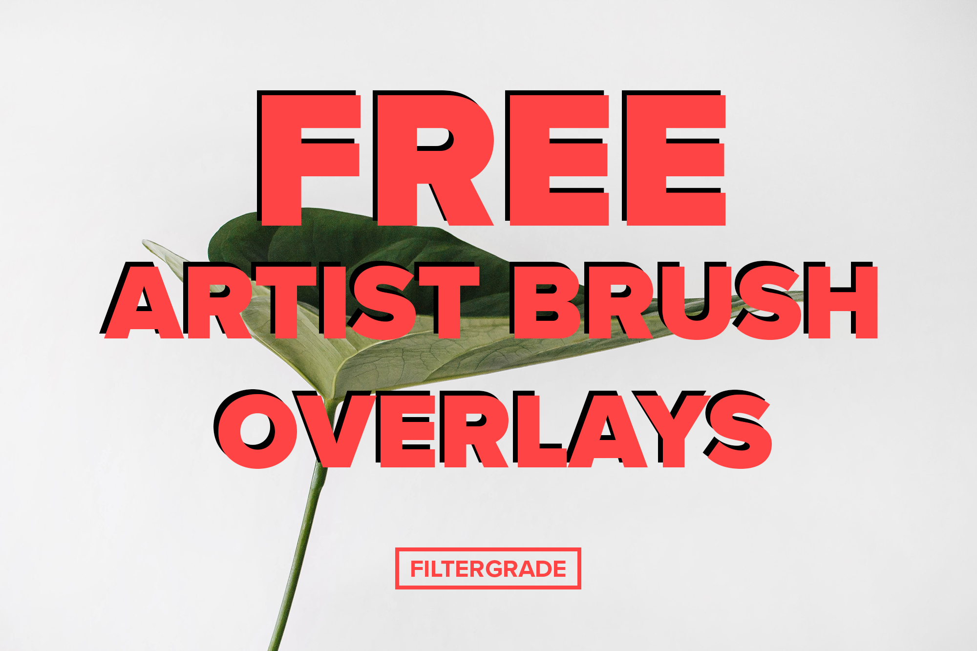 Featured - Matt's Brush Overlay Pack - Matt Moloney - FilterGrade