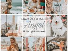 Lucky Angel Mobile Lightroom Preset