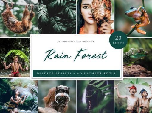 Rain Forest Desktop Lightroom Presets // LR Template