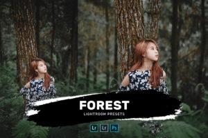 Forest Lightroom Presets Bundle (Desktop + Mobile)