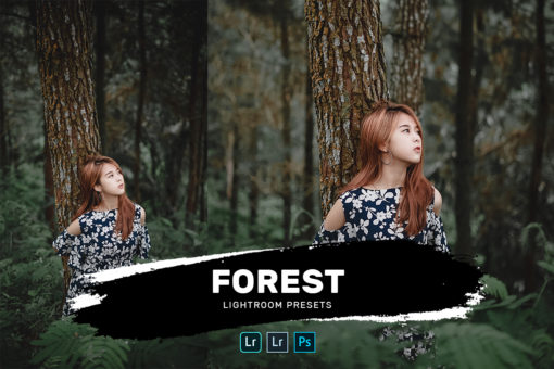 Forest Lightroom Presets Bundle (Desktop + Mobile)