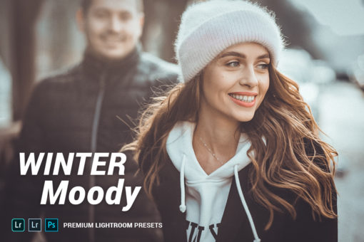 Winter Moody Lightroom Presets (Desktop + Mobile)