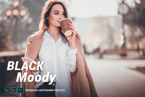 Black Moody Lightroom Presets (Desktop + Mobile)