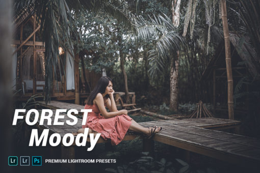 Forest Moody Lightroom Presets (Desktop + Mobile)