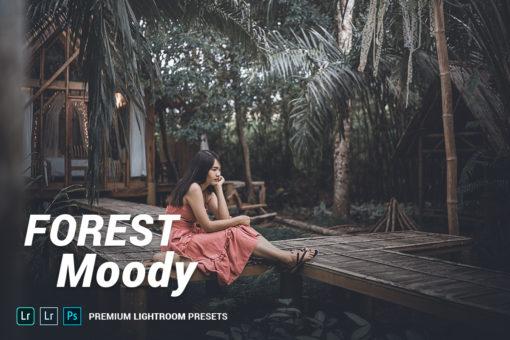 Forest Moody Lightroom Presets (Desktop + Mobile)