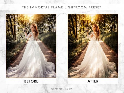 Wedding Lightroom Presets - Vol 1 & 2 (Desktop & Mobile) by Ideal Presets