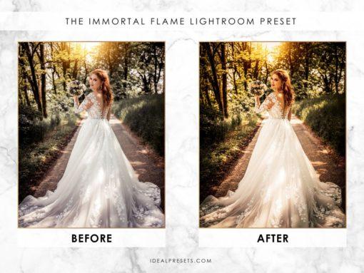 Wedding Lightroom Presets - Vol 1 & 2 (Desktop & Mobile) by Ideal Presets