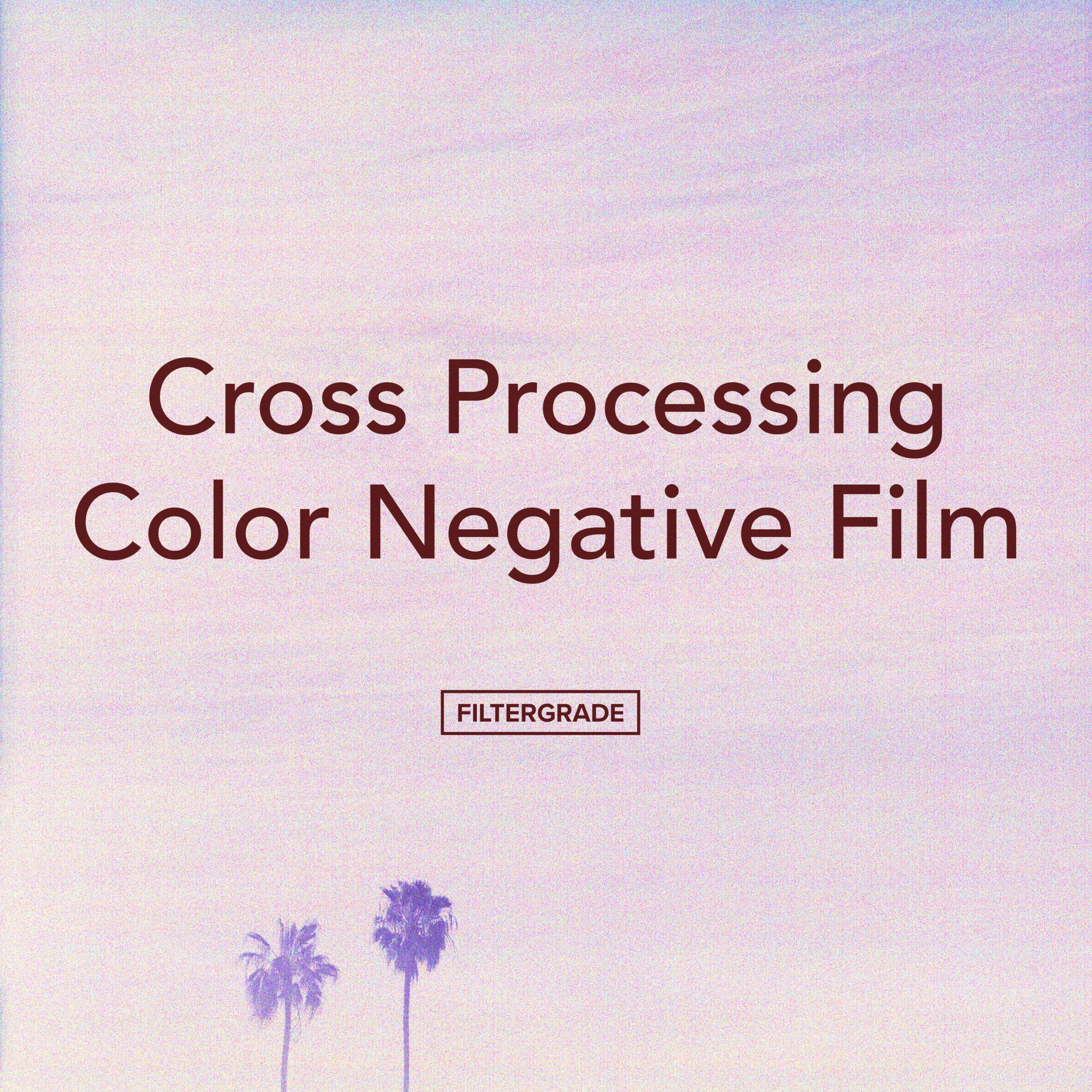 Cross Processing Color Negative Film - FilterGrade